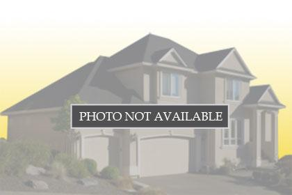1257 Brook View CT, HOLLISTER, Single Family Home,  for sale, Realty World - Advantage